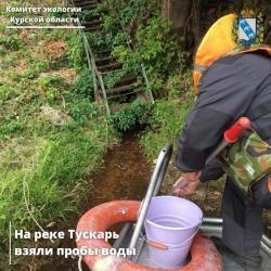 Курские экологи подтвердили сброс сточных вод в реку Тускарь