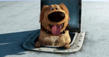 Мультяшные собаки Даг и Макс – покорители мировых рейтингов - Статьи - ilikePet