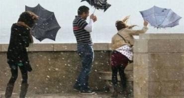 6 правил выбора надежного зонта