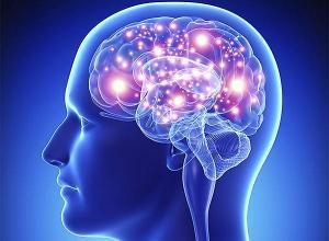 Медики назвали главный признак опасного заболевания мозга