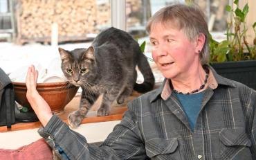 Мистика: пропавший кот вернулся в годовщину гибели сына хозяев - Статьи - ilikePet