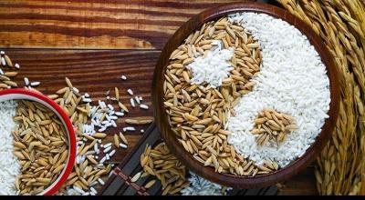 Система питания Инь-Ян