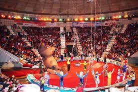 К чему снится цирк? Сонник Цирк