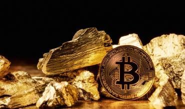 Глава ARK Invest допустила создание биткойном нового золотого стандарта