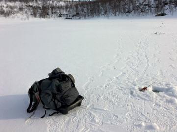 Голец подо льдом