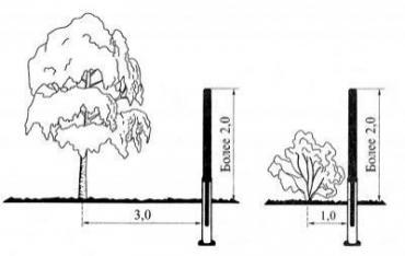 На каком расстоянии от забора можно сажать кустарники