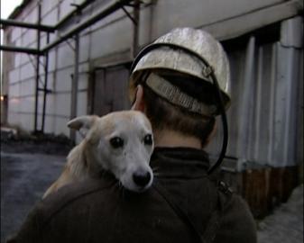 Собака Лялька – шахтёр