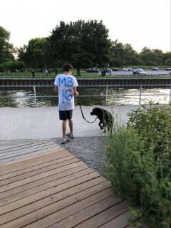 Случилось чудо: мальчик-аутист, боявшийся собак, подружился с лабрадором - Статьи - ilikePet