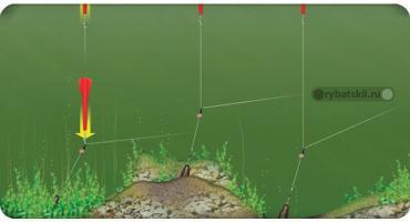 Как пользоваться маркерным грузом для фидерной ловли