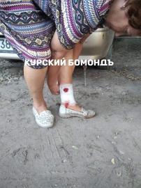 В Курске в лесу КЗТЗ на пожилую женщину напала бродячая собака