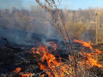 В августе в Курске произошел 71 пожар