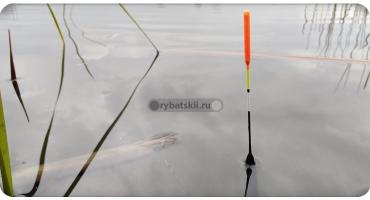 Виды рыболовных поплавков и их предназначения в рыбалке